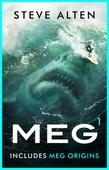 MEG (includes MEG