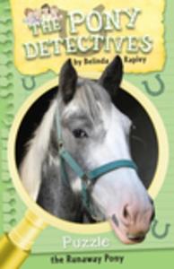 Puzzle (e-bok) av Belinda Rapley