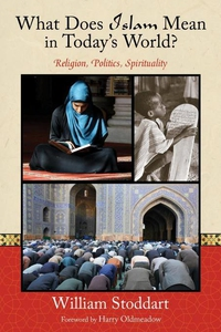 What Does Islam Mean in Today's World? (e-bok)