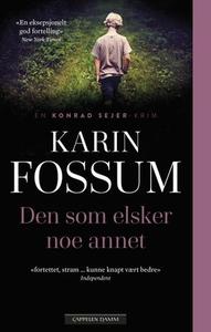 Den som elsker noe annet (ebok) av Karin Foss