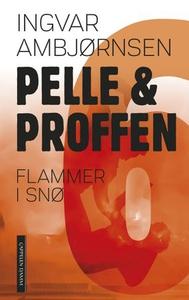 Flammer i snø (ebok) av Ingvar Ambjørnsen