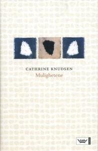 Mulighetene (ebok) av Cathrine Knudsen