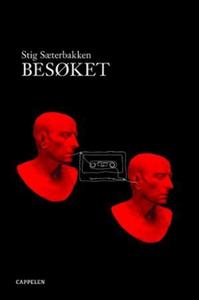 Besøket (ebok) av Stig Sæterbakken