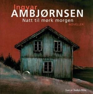 Natt til mørk morgen (lydbok) av Ingvar Ambjø