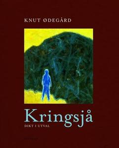 Kringsjå (ebok) av Knut Ødegård