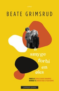 Å smyge forbi en øks (ebok) av Beate Grimsrud