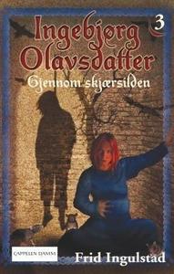 Gjennom skjærsilden (ebok) av Frid Ingulstad