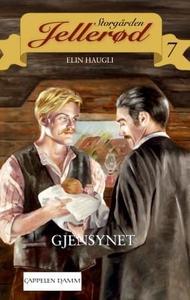 Gjensynet (ebok) av Elin Haugli