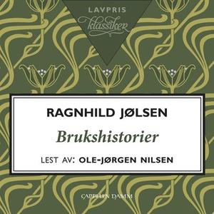 Brukshistorier (lydbok) av Ragnhild Jølsen