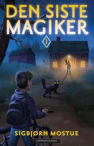 Den siste magiker (ebok) av Sigbjørn Mostue