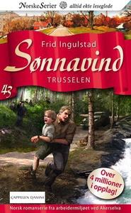 Trusselen (ebok) av Frid Ingulstad