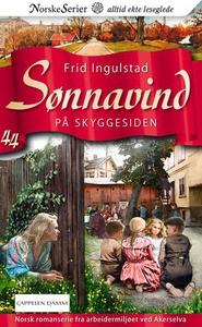 På skyggesiden (ebok) av Frid Ingulstad
