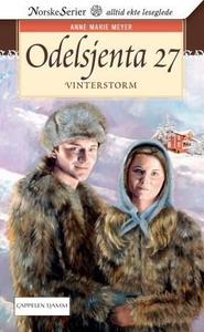 Vinterstorm (ebok) av Anne Marie Meyer