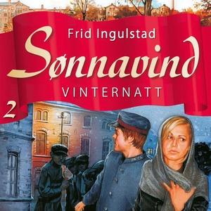 Vinternatt (lydbok) av Frid Ingulstad