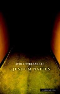 Gjennom natten (ebok) av Stig Sæterbakken