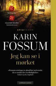 Jeg kan se i mørket (ebok) av Karin Fossum