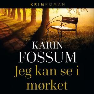 Jeg kan se i mørket (lydbok) av Karin Fossum