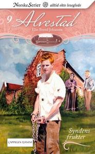 Syndens frukter (ebok) av Elin Brend Johansen