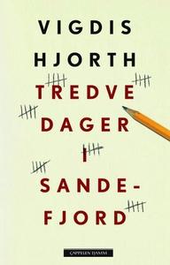 Tredve dager i Sandefjord (ebok) av Vigdis Hj