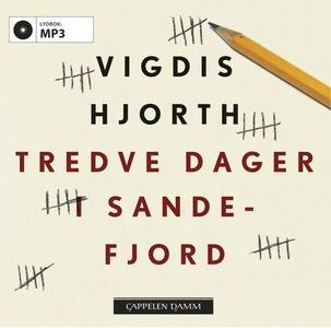 Tredve dager i Sandefjord (lydbok) av Vigdis