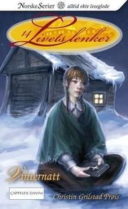Vinternatt (ebok) av Christin Grilstad Prøis