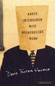 Korte intervjuer med motbydelige menn (ebok)