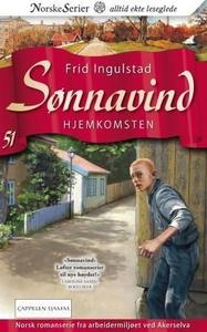 Hjemkomsten (ebok) av Frid Ingulstad