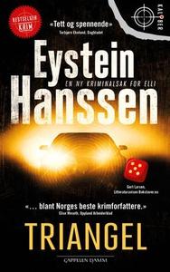 Triangel (ebok) av Eystein Hanssen