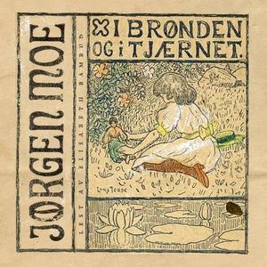 I brønden og i tjærnet (lydbok) av Jørgen Moe