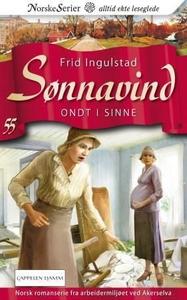 Ondt i sinne (ebok) av Frid Ingulstad