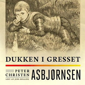 Dukken i gresset (lydbok) av Peter Christen A