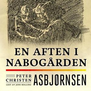 En aften i nabogården (lydbok) av Peter Chris