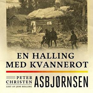 En halling med kvannerot (lydbok) av Peter Ch
