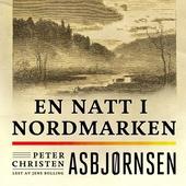 En natt i Nordmarken