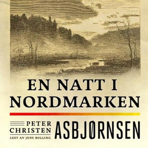 En natt i Nordmarken (lydbok) av Peter Christ