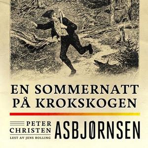 En sommernatt på Krokskogen (lydbok) av Peter