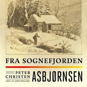 Fra Sognefjorden (lydbok) av Peter Christen A