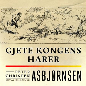 Gjete kongens harer (lydbok) av Peter Christe