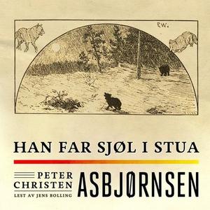 Han far sjøl i stua (lydbok) av Peter Christe