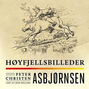 Høyfjellsbilleder (lydbok) av Peter Christen