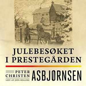 Julebesøket i prestegården (lydbok) av Peter