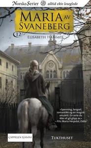 Tukthuset (ebok) av Elisabeth Hammer