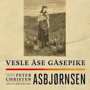 Vesle Åse gåsepike (lydbok) av Peter Christen