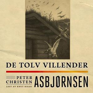 De tolv villender (lydbok) av Peter Christen