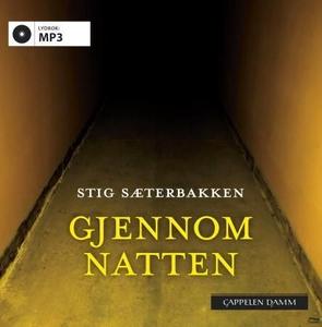 Gjennom natten (lydbok) av Stig Sæterbakken