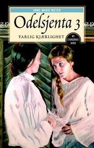 Farlig kjærlighet (ebok) av Anne Marie Meyer