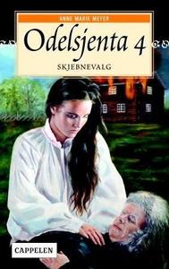 Skjebnevalg (ebok) av Anne Marie Meyer