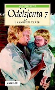 Skammens tårer (ebok) av Anne Marie Meyer