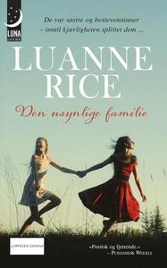 Den usynlige familie (ebok) av Luanne Rice