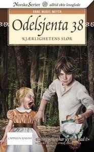 Kjærlighetens slør (ebok) av Anne Marie Meyer